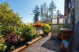 Photo 34: 3662 Coleman Pl in : Co Olympic View Single Family Detached for sale (Colwood)  : MLS®# 850342