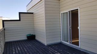 Photo 16: 402 10531 117 Street in Edmonton: Zone 08 Condo for sale : MLS®# E4208867