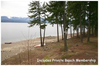 Photo 48: 5255 Chasey Road: Celista House for sale (North Shore Shuswap)  : MLS®# 10078701