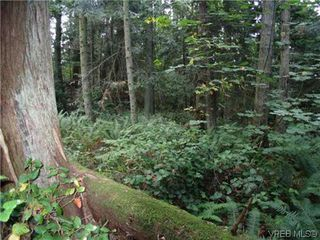 Photo 8: 10865 Fernie Wynd Road in NORTH SAANICH: NS Curteis Point Land for sale (North Saanich)  : MLS®# 320358