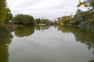 Photo 10: 158 Lake Grove Bay in Winnipeg: Waverley Heights Single Family Detached for sale (South Winnipeg)  : MLS®# 1423298