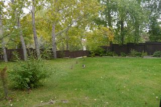 Photo 8: 158 Lake Grove Bay in Winnipeg: Waverley Heights Single Family Detached for sale (South Winnipeg)  : MLS®# 1423298