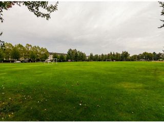 Photo 16: 407 5475 201 STREET in Langley: Langley City Condo for sale : MLS®# R2072058