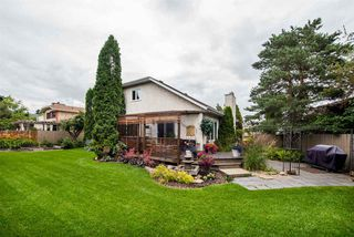 Photo 28: 216 WAYGOOD Road in Edmonton: Zone 22 House for sale : MLS®# E4168750