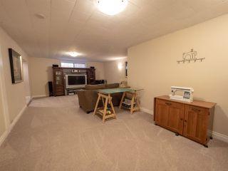Photo 19: 5312 91 Avenue in Edmonton: Zone 18 House for sale : MLS®# E4171346