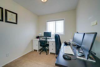 Photo 23: 4023 37 Avenue in Edmonton: Zone 29 House for sale : MLS®# E4172069