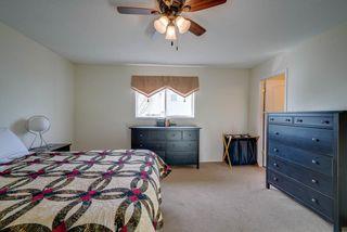 Photo 17: 4023 37 Avenue in Edmonton: Zone 29 House for sale : MLS®# E4172069