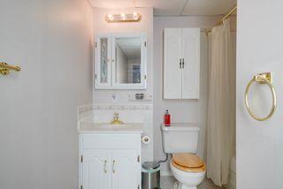 Photo 26: 4023 37 Avenue in Edmonton: Zone 29 House for sale : MLS®# E4172069
