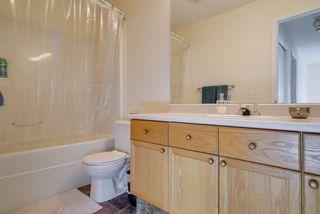 Photo 22: 4023 37 Avenue in Edmonton: Zone 29 House for sale : MLS®# E4172069