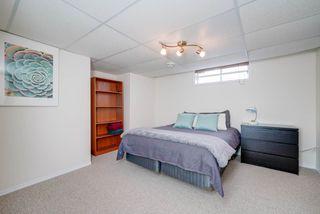 Photo 25: 4023 37 Avenue in Edmonton: Zone 29 House for sale : MLS®# E4172069