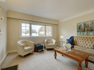 Photo 4: 1559 Westall Ave in VICTORIA: Vi Oaklands House for sale (Victoria)  : MLS®# 828573