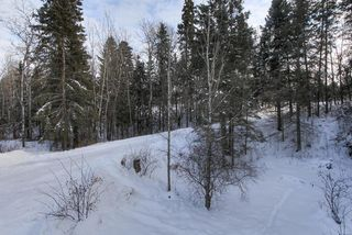 Photo 43: 22 52420 RGE RD 13: Rural Parkland County House for sale : MLS®# E4187447