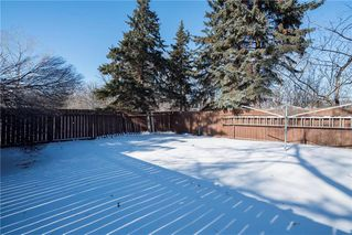 Photo 16: 52 Reay Crescent in Winnipeg: Valley Gardens Residential for sale (3E)  : MLS®# 202003630