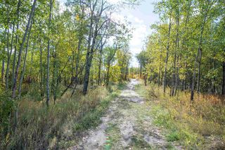 Photo 50: 13 51565 RGE RD 223: Rural Strathcona County House for sale : MLS®# E4203541