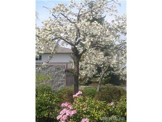 Photo 16: 203 400 Dupplin Road in VICTORIA: SW Rudd Park Condo Apartment for sale (Saanich West)  : MLS®# 324011