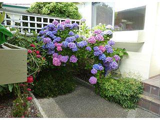 Photo 12: # 2 14263 18A AV in Surrey: Sunnyside Park Surrey Condo for sale (South Surrey White Rock)  : MLS®# F1417983