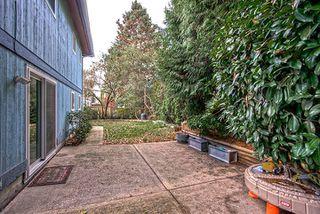 Photo 19: 1589 CHADWICK AVENUE in Port Coquitlam: Glenwood PQ House for sale : MLS®# R2013200