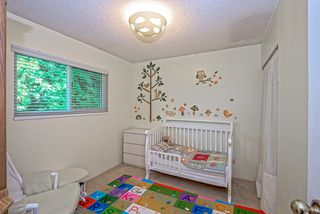 Photo 12: 1589 CHADWICK AVENUE in Port Coquitlam: Glenwood PQ House for sale : MLS®# R2013200