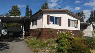 Photo 1: 111 3665 244TH STREET in Langley: Otter District Manufactured Home for sale : MLS®# R2105828