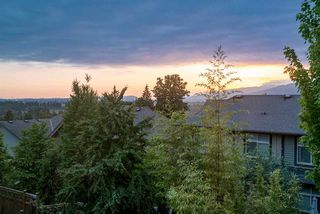 Photo 20: 13769 230A STREET in Maple Ridge: Silver Valley Condo for sale : MLS®# R2270233