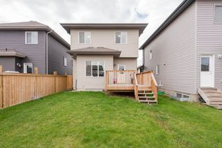 Photo 26: 7322 ARMOUR Crescent in Edmonton: Zone 56 House for sale : MLS®# E4168829