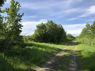 Photo 15: 55506 RGE RD  61: Rural Lac Ste. Anne County Rural Land/Vacant Lot for sale : MLS®# E4201695