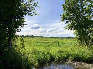 Photo 17: 55506 RGE RD  61: Rural Lac Ste. Anne County Rural Land/Vacant Lot for sale : MLS®# E4201695