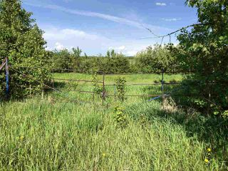 Photo 7: 55506 RGE RD  61: Rural Lac Ste. Anne County Rural Land/Vacant Lot for sale : MLS®# E4201695