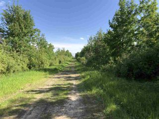 Photo 14: 55506 RGE RD  61: Rural Lac Ste. Anne County Rural Land/Vacant Lot for sale : MLS®# E4201695