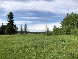 Photo 6: 55506 RGE RD  61: Rural Lac Ste. Anne County Rural Land/Vacant Lot for sale : MLS®# E4201695