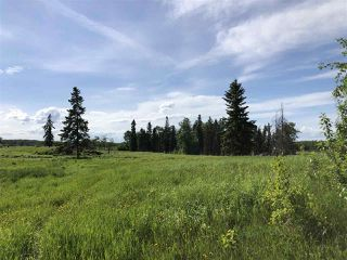 Photo 4: 55506 RGE RD  61: Rural Lac Ste. Anne County Rural Land/Vacant Lot for sale : MLS®# E4201695