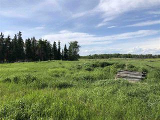 Photo 10: 55506 RGE RD  61: Rural Lac Ste. Anne County Rural Land/Vacant Lot for sale : MLS®# E4201695