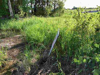 Photo 16: 55506 RGE RD  61: Rural Lac Ste. Anne County Rural Land/Vacant Lot for sale : MLS®# E4201695