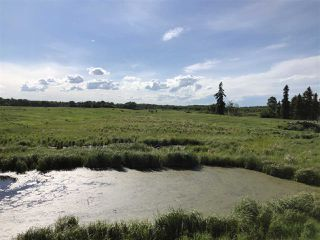 Photo 13: 55506 RGE RD  61: Rural Lac Ste. Anne County Rural Land/Vacant Lot for sale : MLS®# E4201695
