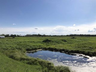 Photo 12: 55506 RGE RD  61: Rural Lac Ste. Anne County Rural Land/Vacant Lot for sale : MLS®# E4201695