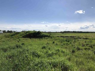Photo 5: 55506 RGE RD  61: Rural Lac Ste. Anne County Rural Land/Vacant Lot for sale : MLS®# E4201695