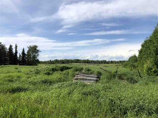 Photo 8: 55506 RGE RD  61: Rural Lac Ste. Anne County Rural Land/Vacant Lot for sale : MLS®# E4201695