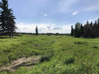 Photo 9: 55506 RGE RD  61: Rural Lac Ste. Anne County Rural Land/Vacant Lot for sale : MLS®# E4201695
