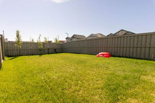 Photo 40: 6863 Cardinal Link SW in Edmonton: Zone 55 House Half Duplex for sale : MLS®# E4202225