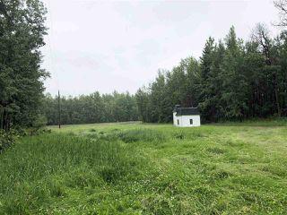Photo 31: 49024 Range Road 73: Rural Brazeau County House for sale : MLS®# E4204541
