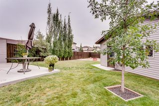 Photo 29: 75 LUXSTONE Point SW: Airdrie Semi Detached for sale : MLS®# A1033652