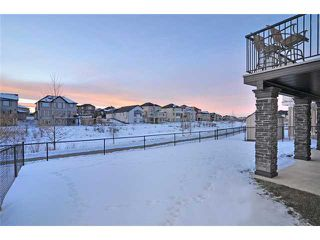 Photo 20: 144 Rainbow Falls Manor: Chestermere Residential Detached Single Family for sale : MLS®# C3549630