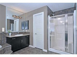 Photo 16: 144 Rainbow Falls Manor: Chestermere Residential Detached Single Family for sale : MLS®# C3549630