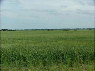 Photo 4: A51069 HWY 814: Rural Leduc County Rural Land/Vacant Lot for sale : MLS®# E3345456