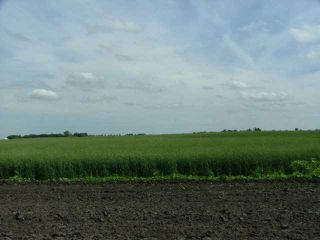 Photo 5: A51069 HWY 814: Rural Leduc County Rural Land/Vacant Lot for sale : MLS®# E3345456