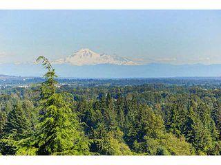Photo 9: 3422 GISLASON Avenue in Coquitlam: Burke Mountain House for sale : MLS®# V1074935