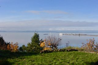 Photo 1: 767 GLENWOOD Drive in Delta: English Bluff House for sale (Tsawwassen)  : MLS®# R2415079