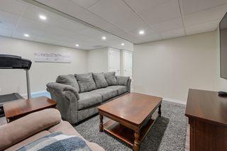 Photo 49: 7 Hartwick Loop: Spruce Grove House Duplex for sale : MLS®# e4216018