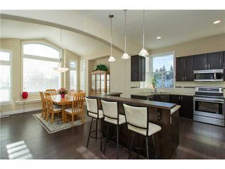 Photo 7: 3376 DON MOORE DR in Coquitlam: Burke Mountain House for sale : MLS®# V1040050