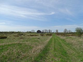 Main Photo: Lot 16 Concession Rd 6 in Kawartha Lakes: Eldon Freehold for sale : MLS®# X4128031
